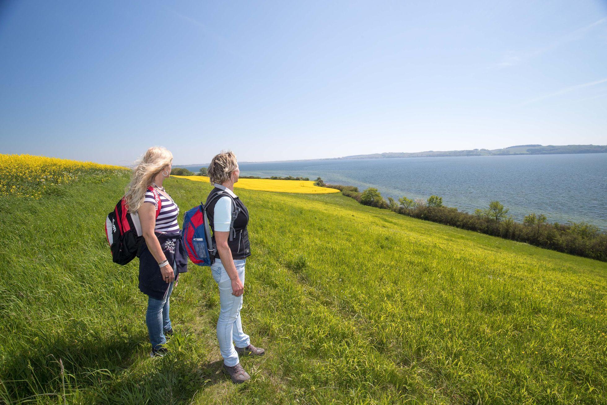 Goehren Wandern5 Spaziergänge
