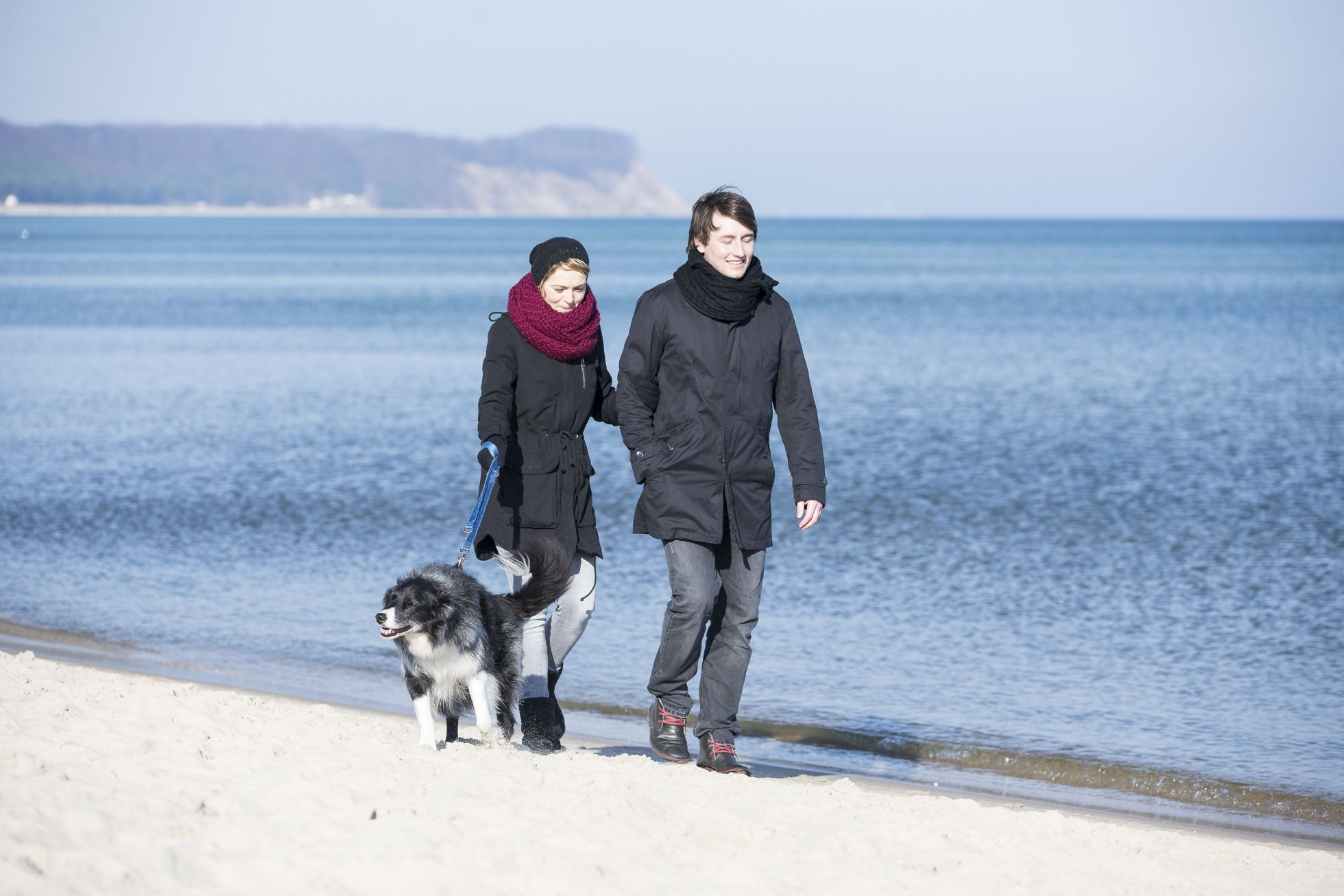 Goehren Strand Hund3