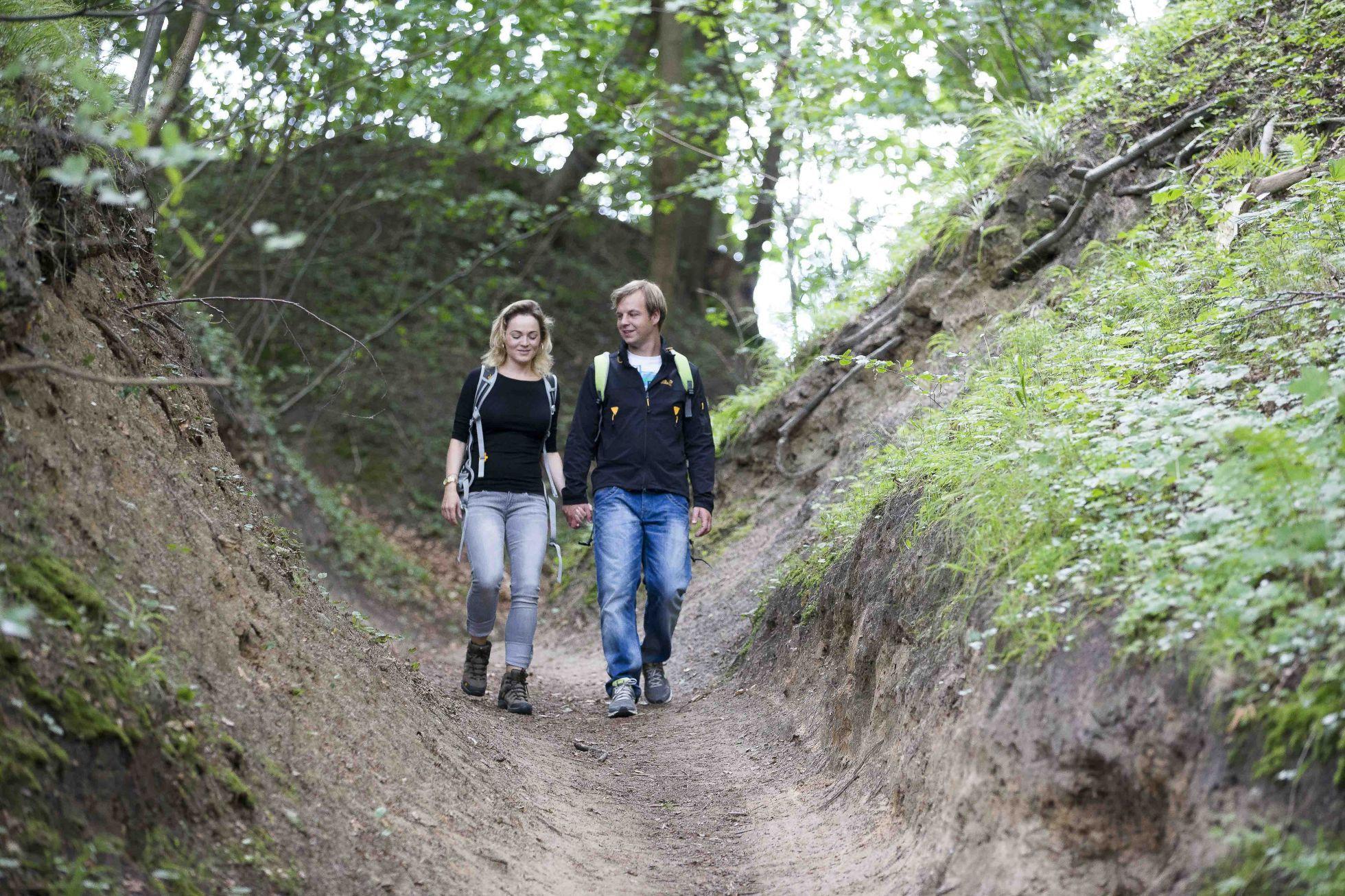 Goehren Wandern1